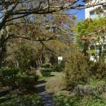 Jardines - Centro Educativo Galén