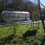 Huerta Ecológica - Centro Educativo Galén