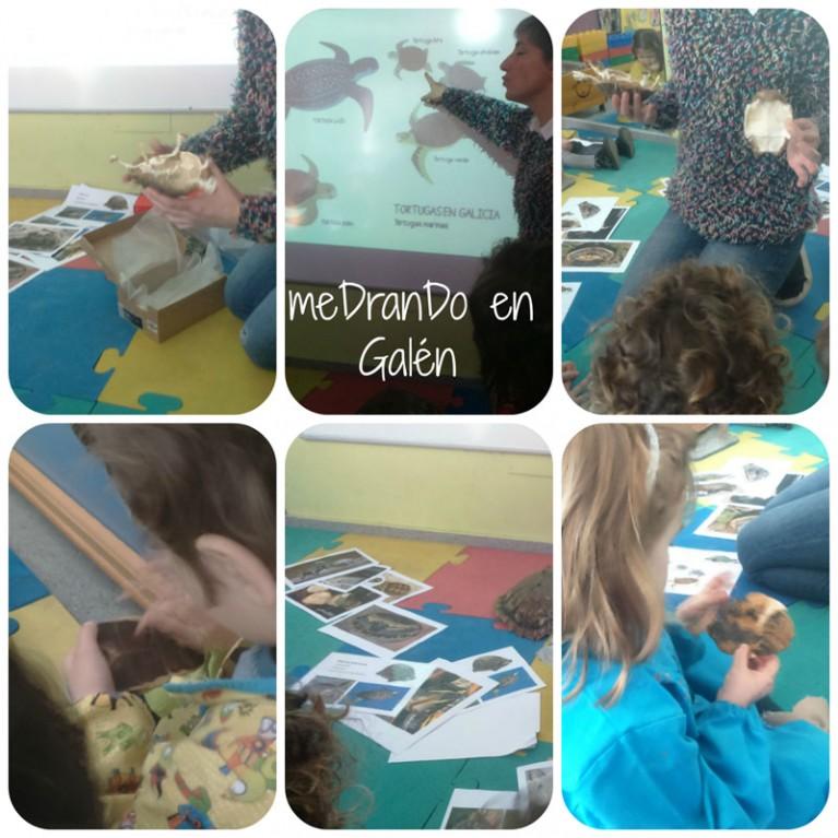 colaboración Nuria esqueletes