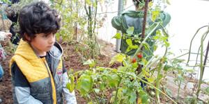 Centro Galén - Proxecto Verde